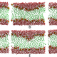 Density-biased sampling: A robust computational method for studying pore formation in membranes