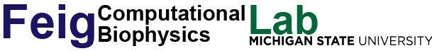 Feig Lab Computational Biophysics logo