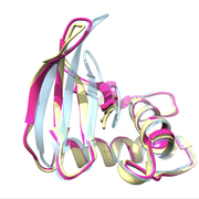 Protein structure refinement